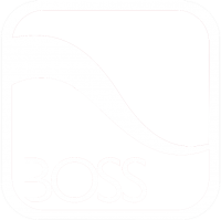 LOGO BOSS copia